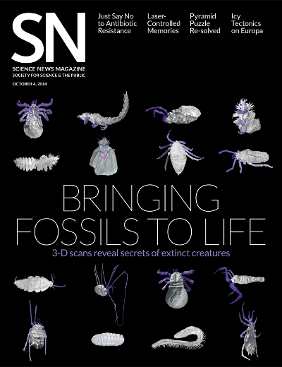 Click here for Science News virtual palaeontology article